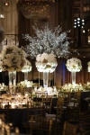 a glimpse at the table settings